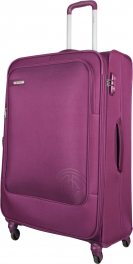 Легкий чемодан Carlton Hamilton 120J479;74