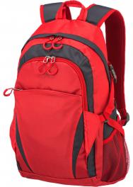 Рюкзак для ноутбука Travelite Basics TL096236-10
